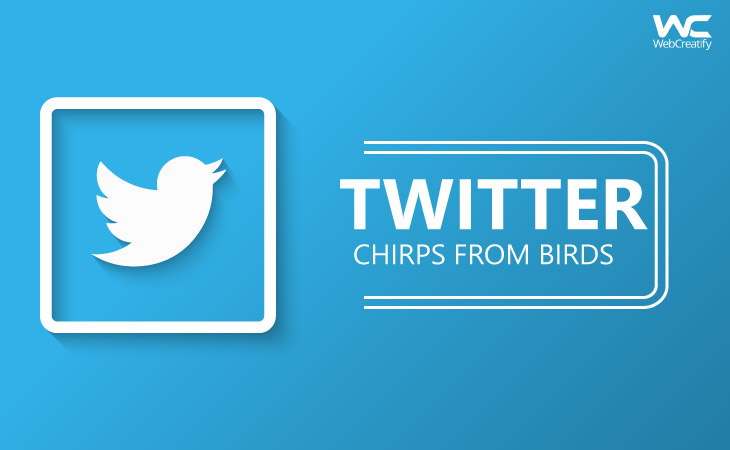 Twitter : Chirps from Birds - WebCreatify